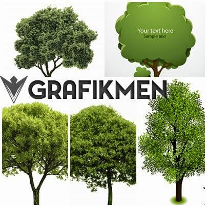 8 Adet Kaliteli Ağaç Vektör Ve Stok Fotoğrafı