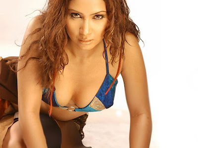 Hot Actress Kim Sharma's HD Wallpapers