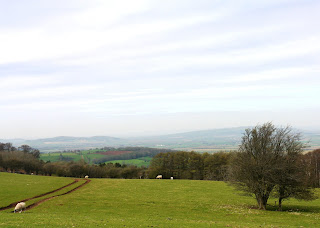 A view from the Cotswold Edge