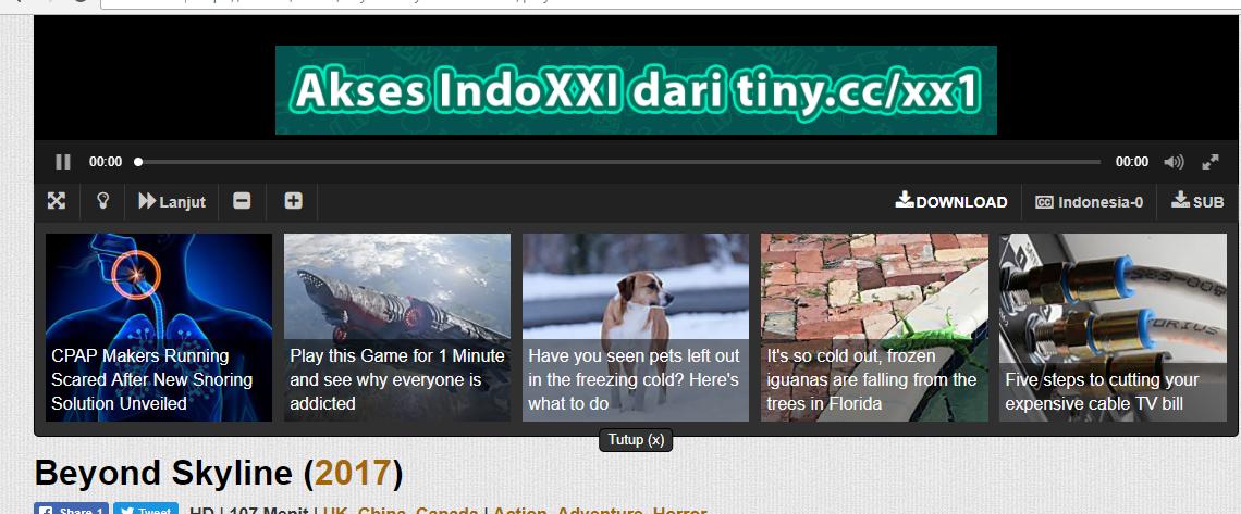 Indoxxi