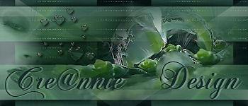 De site van Annie