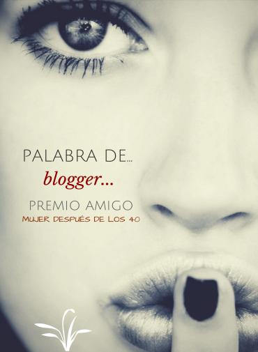 Palabra de blogger premio amigo noviembre