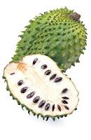 Benefits of Soursop Fruit