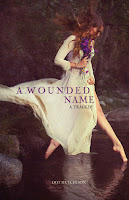 book cover of A Wounded Name by Dot Hutchison