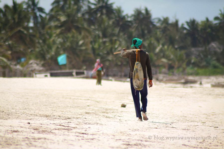 zdjęcie Zanzibar na plaży