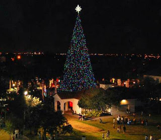 Christmas Tree Delray Beach Florida