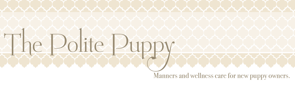The Polite Puppy