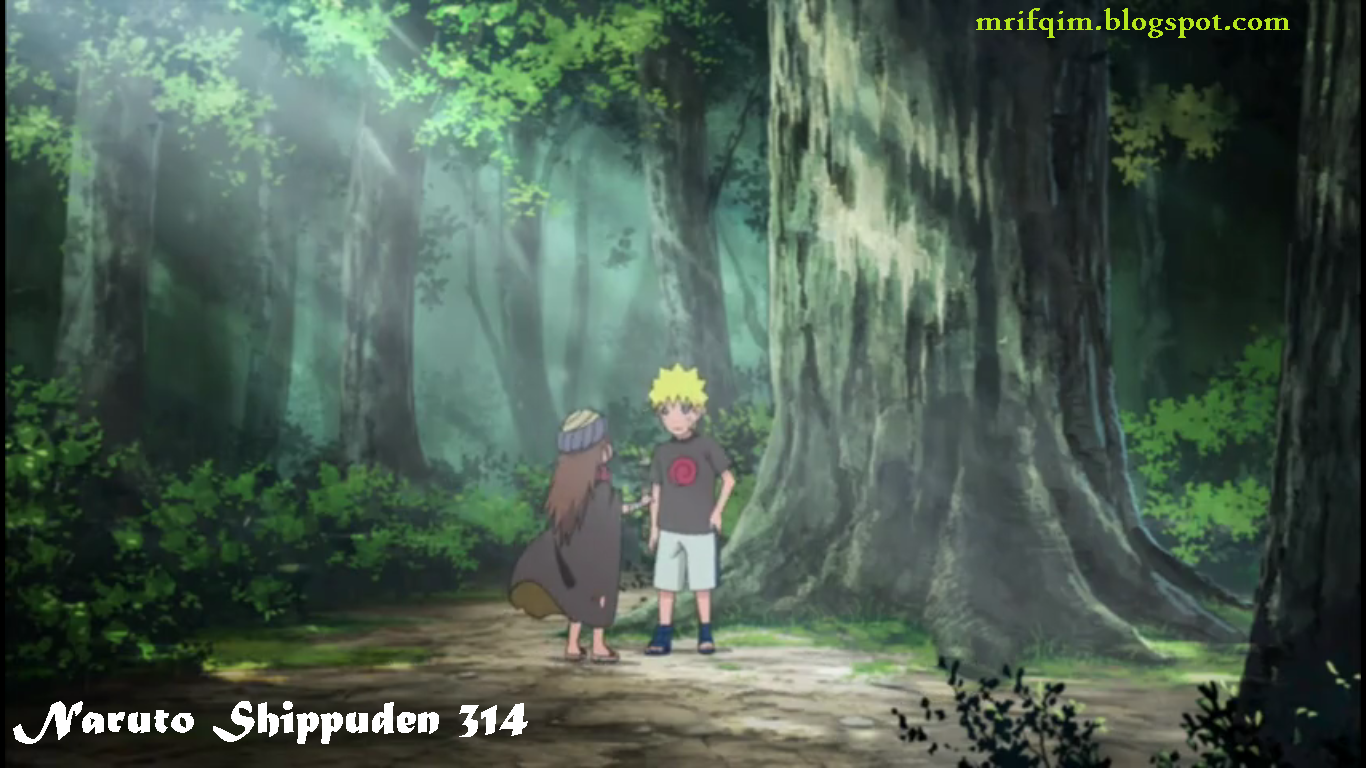 download naruto shippuden 314 indonesia, download film naruto 314