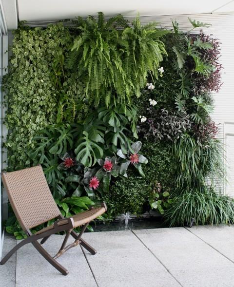 jardim vertical no muro : jardim vertical no muro:Jardim vertical com várias espécies que se adaptam a ambientes com