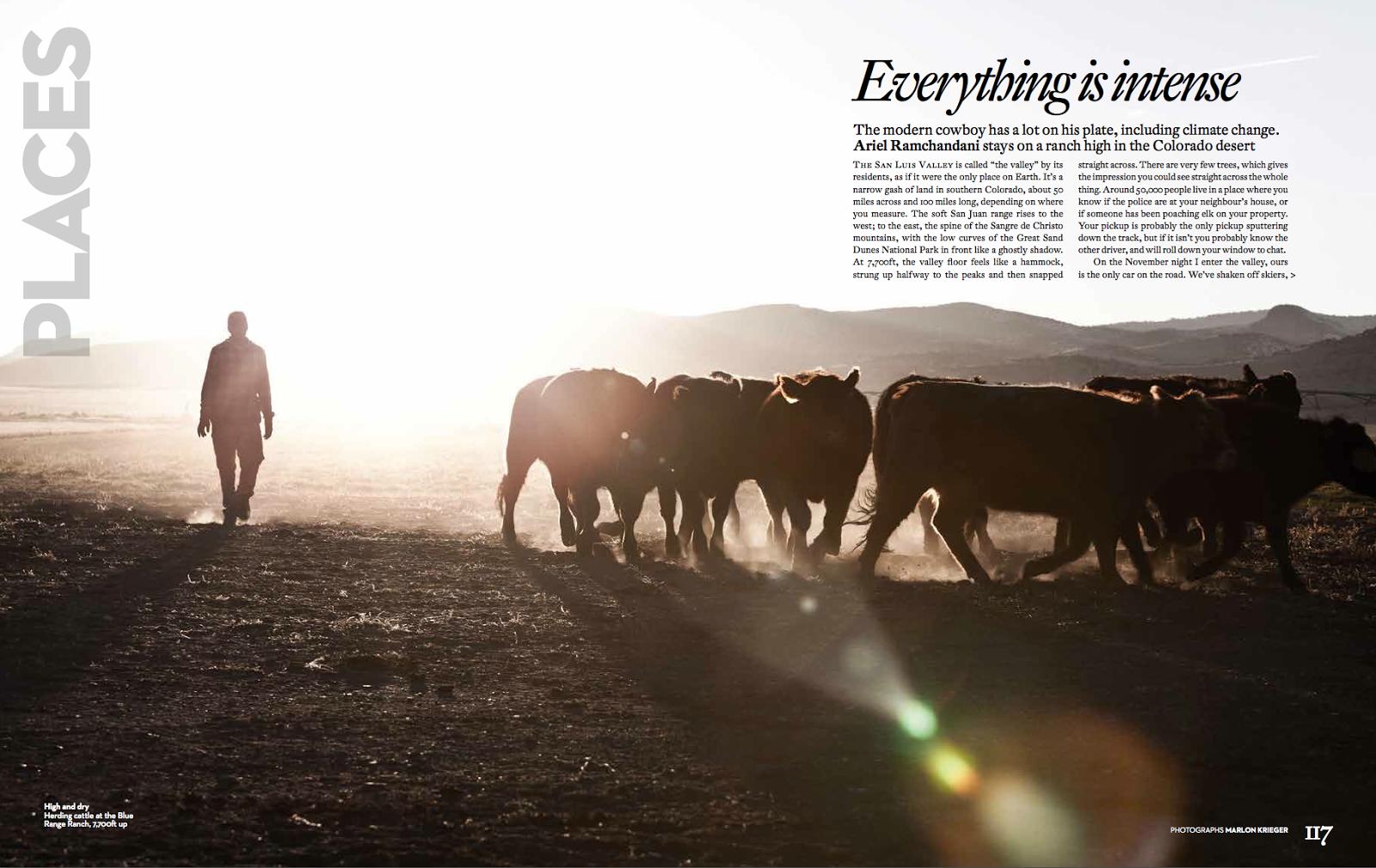 21st Century Cowboy by Ariel Ramchandani