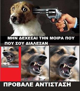 ΤΟ…ΣΑΛΠΙΣΜΑ