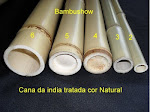Bambu Cana da India  Tratado - Cor Natural