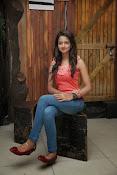 Cute Shanvi Glamorous Photos Gallery-thumbnail-14