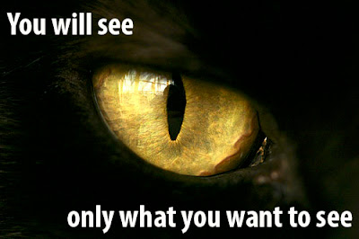 you only see what you want to see, cat's eye. the all seeing eye. illuminati, one eye.