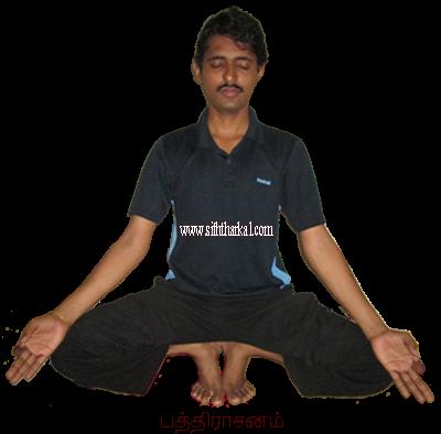 Image result for பத்திராசனம்