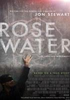 Rosewater (2014) DVDRip Latino