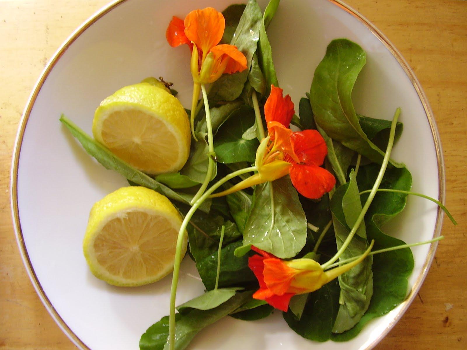Mi mano de yeso cocinar - Flores para cocinar ...