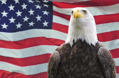 4 Iulie in America