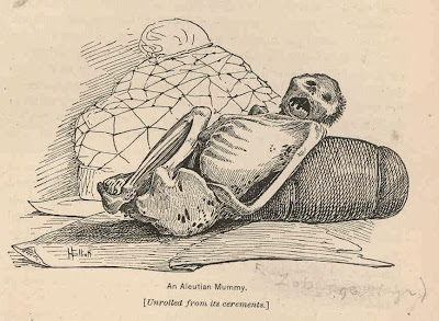Aleutian mummy