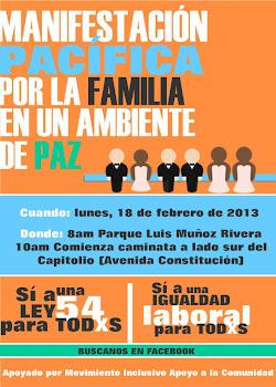 Manifestacion feb 18 del 2013