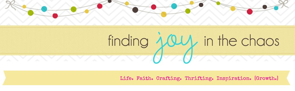 Finding Joy in the Chaos....
