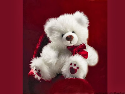 Sweet teddy bear Wallpaper