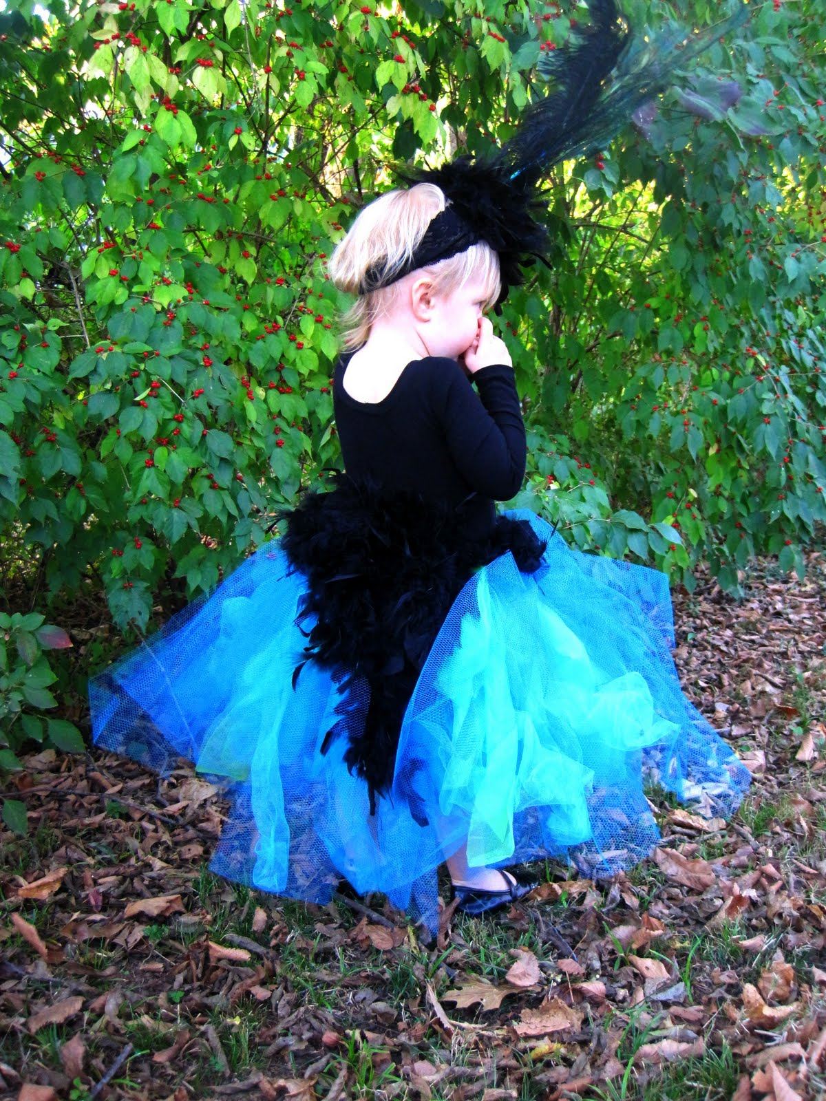 forty dollars a month: peacock costume and halloween outfit