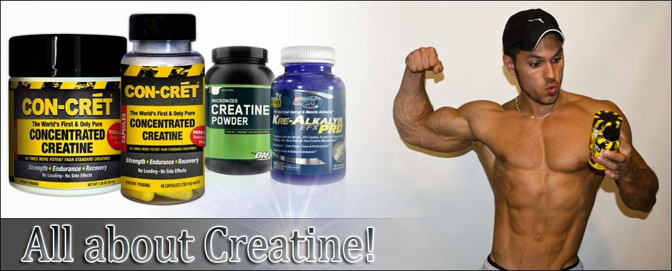 a history of creatine in bodybuilding supplements The top 5 science based supplements for bodybuilding differences in creatine retention among three nutritional formulations of oral creatine supplements.