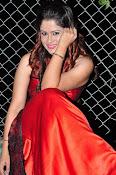 Shilpa Chakravarthy at Appudala Ippudila audio-thumbnail-13