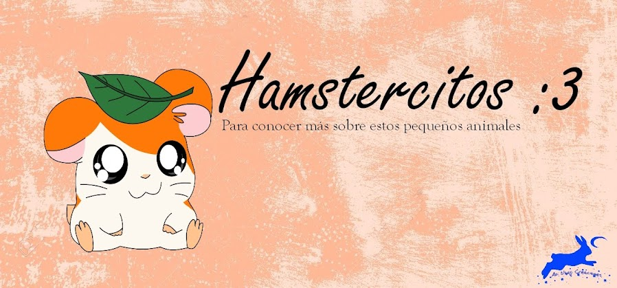 Hamstercitos :3