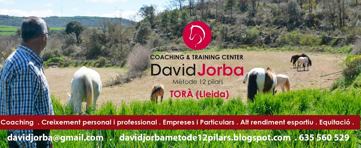 COACHING & TRAINING CENTER DAVID JORBA . MÈTODE 12 PILARS .