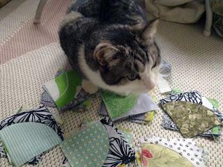 Tilkkutyöt: Juopon polku -tilkkublokkeja. Kissa tutkii.