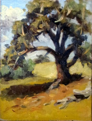 Oil painting of a manna gum in bright sunlight, with dry grass and trees in the distance.