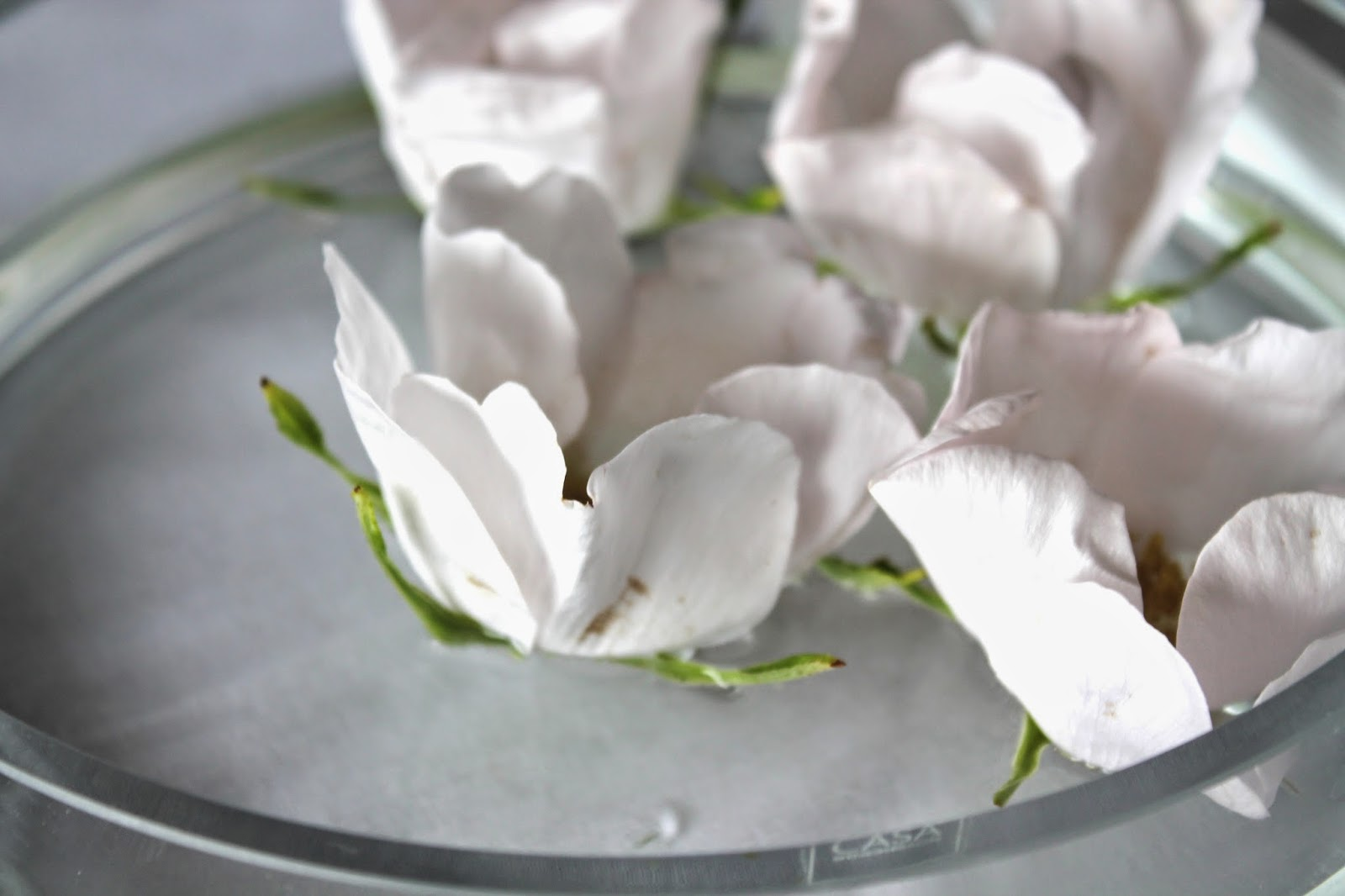 roses floting in a bowl