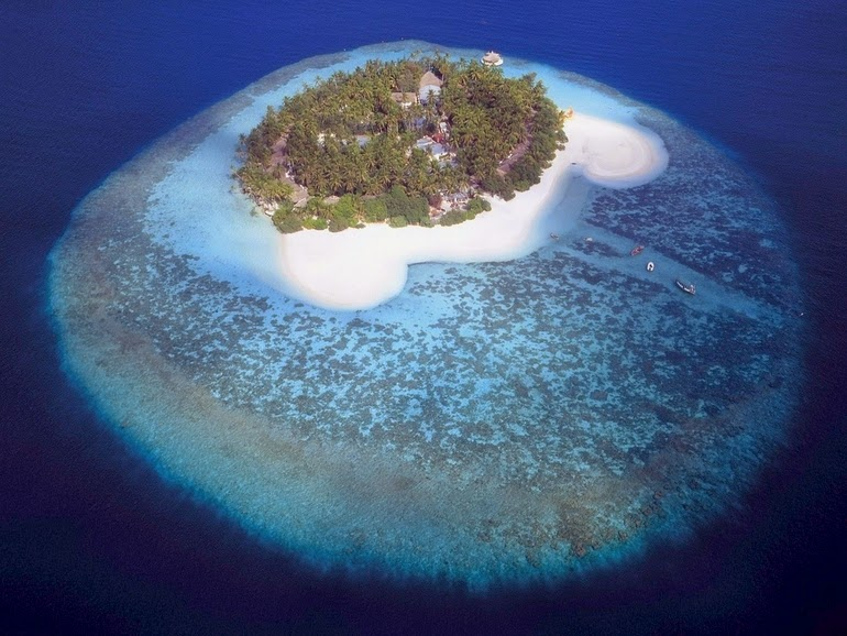 aerial photography - Island in the Maldives