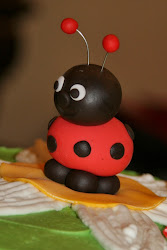 The Ladybug Party
