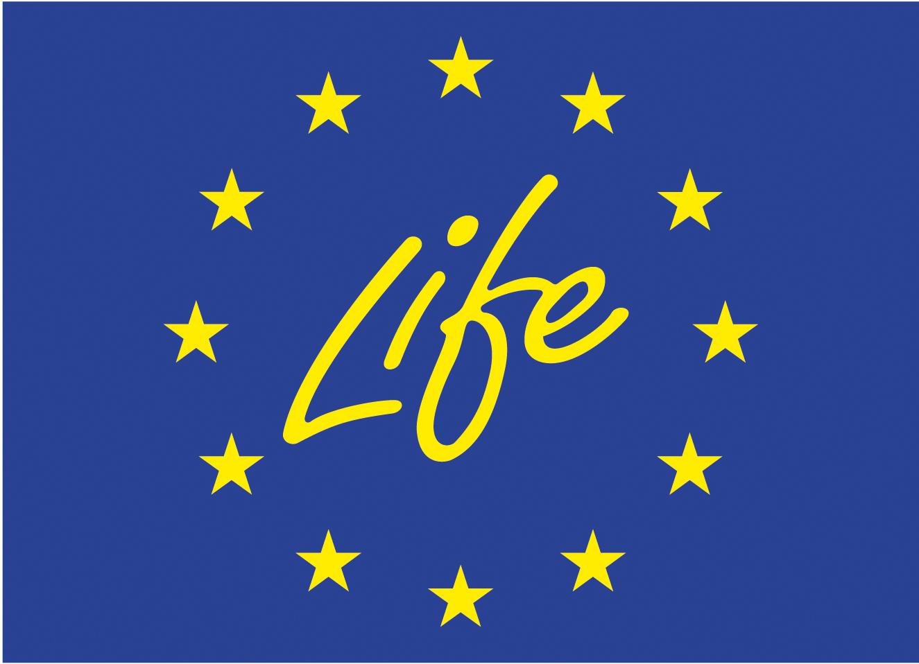 Roseate Tern EU LIFE project