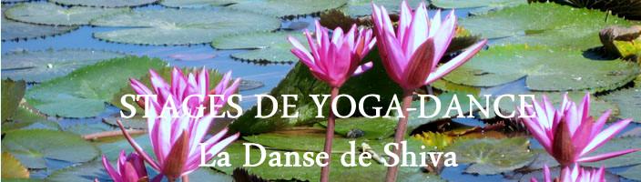 yoga-danse
