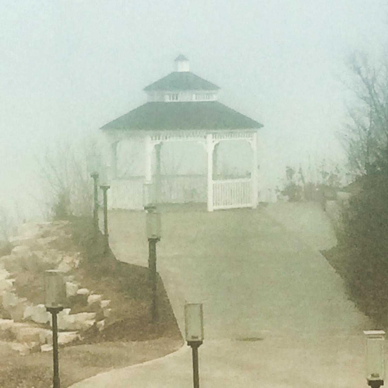 Misty Mornings At Hermann Hill