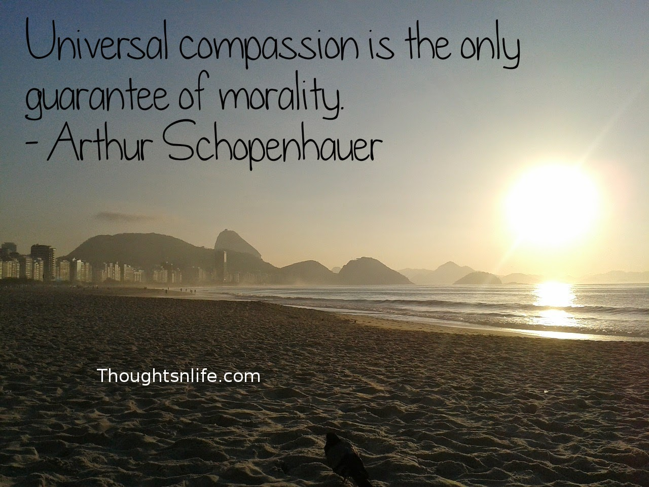 Compassion-quotes-quotes-on-compassion