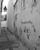 """PRIMER PREMIO II CONCURSO DE FOTOGRAFÍA """"Córdoba, ciudad de filósofos"""""""
