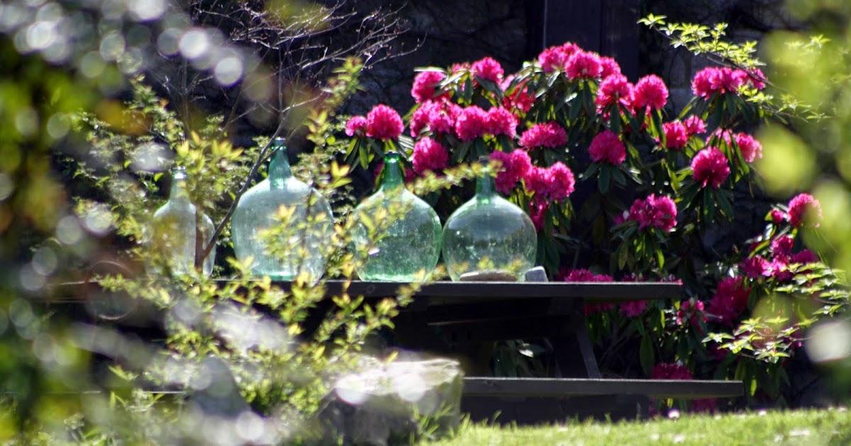 El jard n de margarita segunda primavera del rododendro for El jardin del deseo pendientes