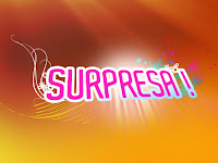 surpresa_5001.jpg (500×375)