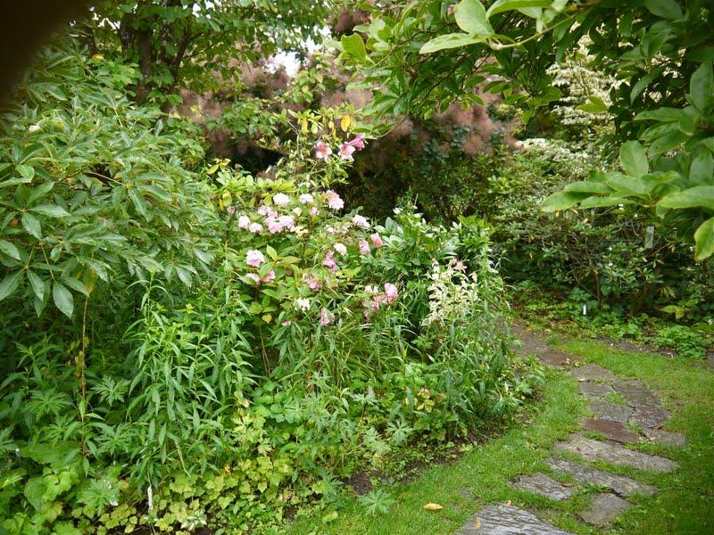Les carnets de mathilde les jardins de la petite rochelle - Petit banc de jardin la rochelle ...