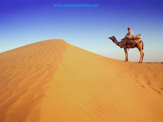 picture of Rajasthan desrt jaisalmer with camel