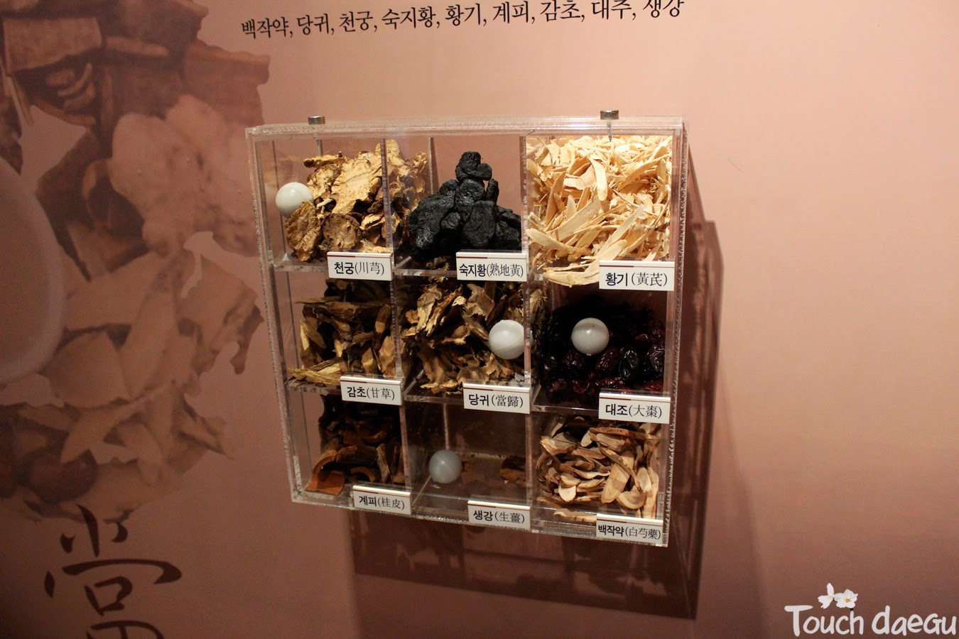 The inside view of Yangnyeongsi museum-3