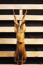 cervo oro
