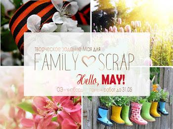 ТЗ Family scrap