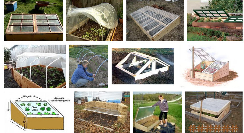~ Cool Cold Frames ~