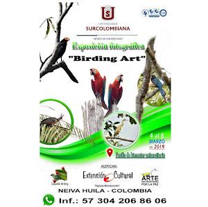 Birding Art